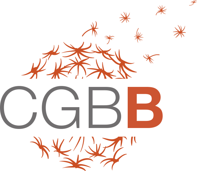 CGBB 2 002